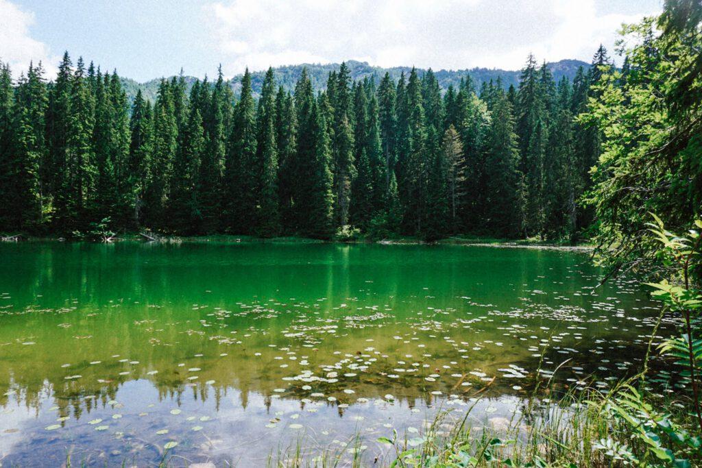 Montenegro Jablan Jezero ferienfrei