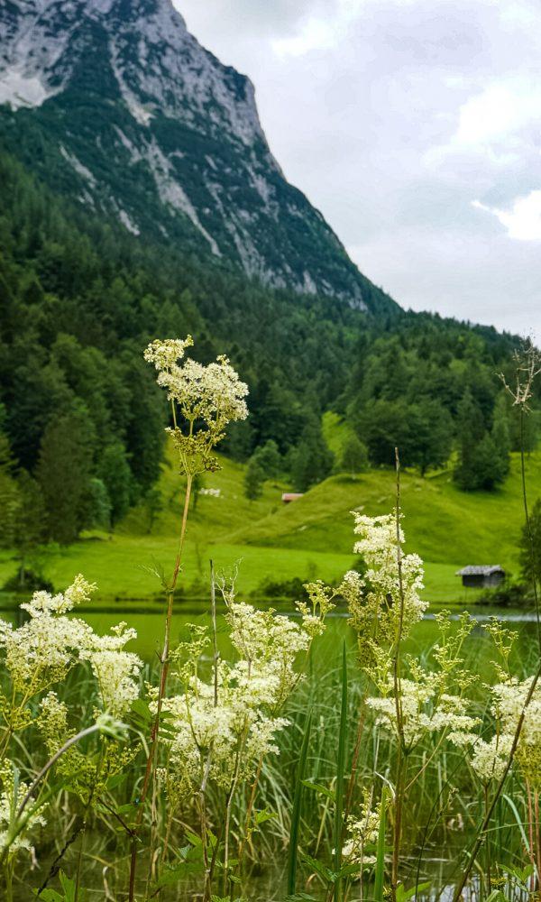 Mittenwald Ausflugstipps Ferchensee
